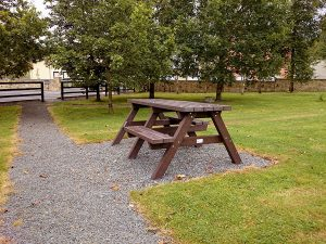 picnic table photo 7