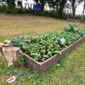 raised bed 360cmA